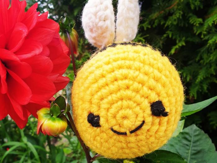 Hvordan kan vi hjelpe humla og andre pollinerende insekter?